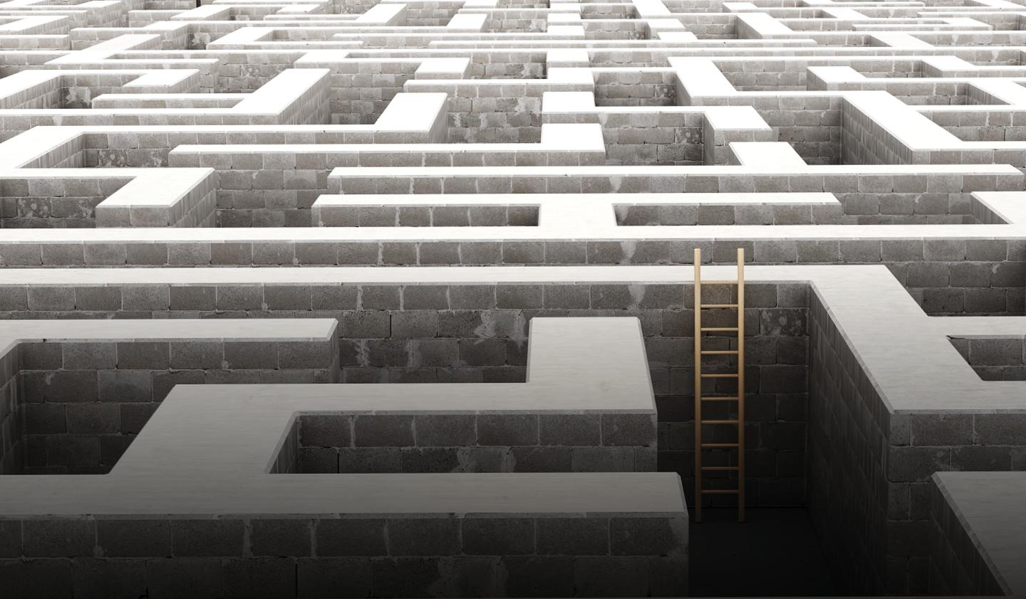 ladder in a maze