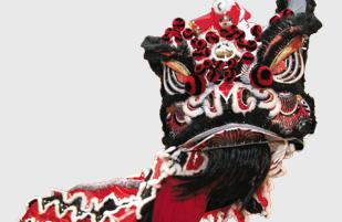 Chinese New Year lion costume