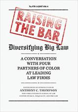 Book cover art for Raising the Bar